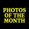 PHOTOS OF THE MONTH – JUNE 2015